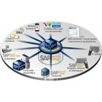 上海SAP经销商 国内SAP系统分销商 选资深代理达策