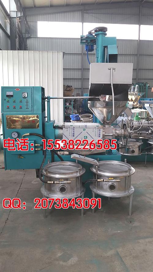 大豆榨油机图片