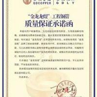 重庆龙煜精密铜管有限公司
